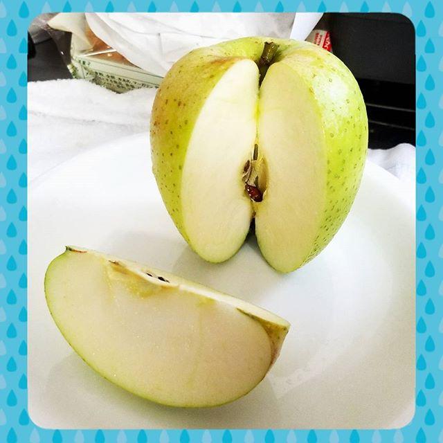"""王林の試食をしました菱沼農園では、くだものをお客様にお届けする前に、必ず自分たちで試食をして味を確かめています皆さんはこの王林(おうりん)というりんごを食べたことはありますか?青リンゴって見た目からしてなんとなく""""酸っぱい""""イメージがあるかと思いますが、実はそんなことないんです王林は酸味は少なめで、シャキシャキとした軽い食感が特徴なんですよ中には「りんごの中で一番好き」なんていう方もいるんです♡皆さんも是非一度この王林を味わってみてはいかがでしょうか♪菱沼農園のHPよりご注文受付中でございます!!!#りんご#林檎#apple#秋#果物#フルーツ#福島#ふくしま#飯坂#菱沼農園#HP#王林#サンふじ"""