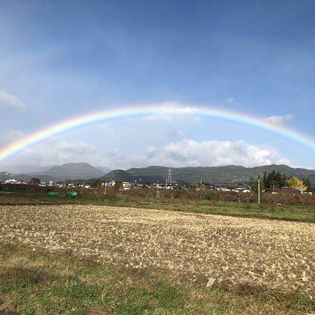 今朝、社長が撮影した虹ですとってもキレイなアーチで、しかもよ~く見ると2本あるんですダブルアーチは幸福のサインとも言われているそうなのど、なにかいいことが起きるといいですね#虹#rainbow#ダブルアーチ#幸福#lucky#福島市#飯坂町#菱沼農園